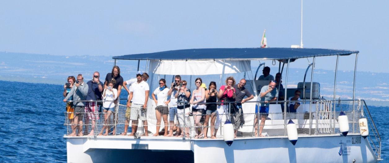 Catamaran Dolfijnen spotten Ionische Zee vanuit B&B Villa Lavanda
